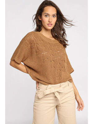 Pull manches courtes col rond marron femme