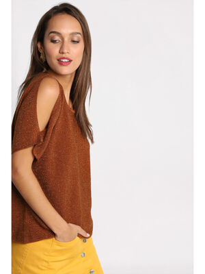 Pull manches courtes marron femme